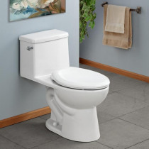 Cheviot 591-WH MODENA One Piece High Efficiency Toilet with Elongated Front
