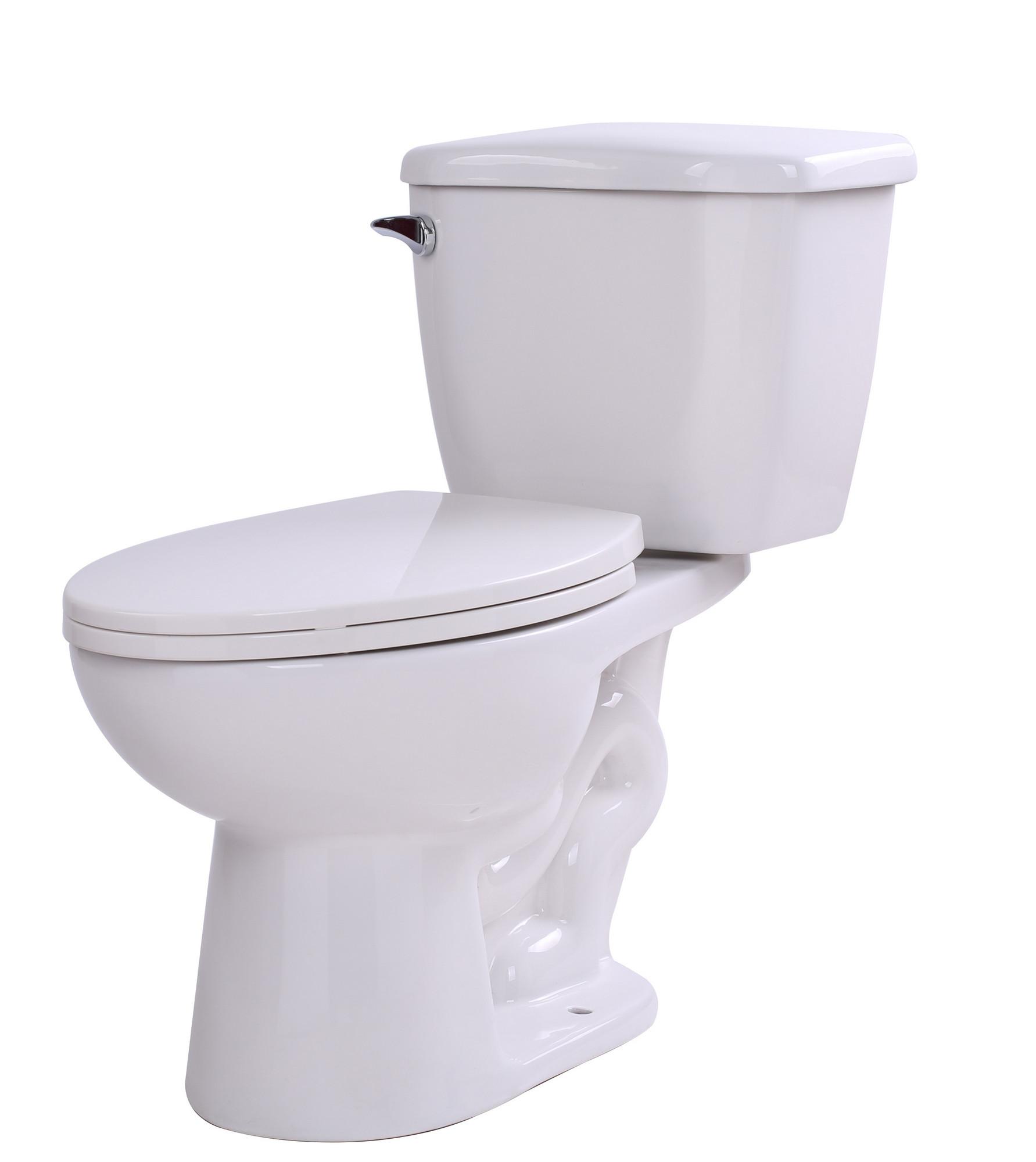 ANZZI T1-AZ055 Kame 2 Piece Single Flush Elongated Toilet In White