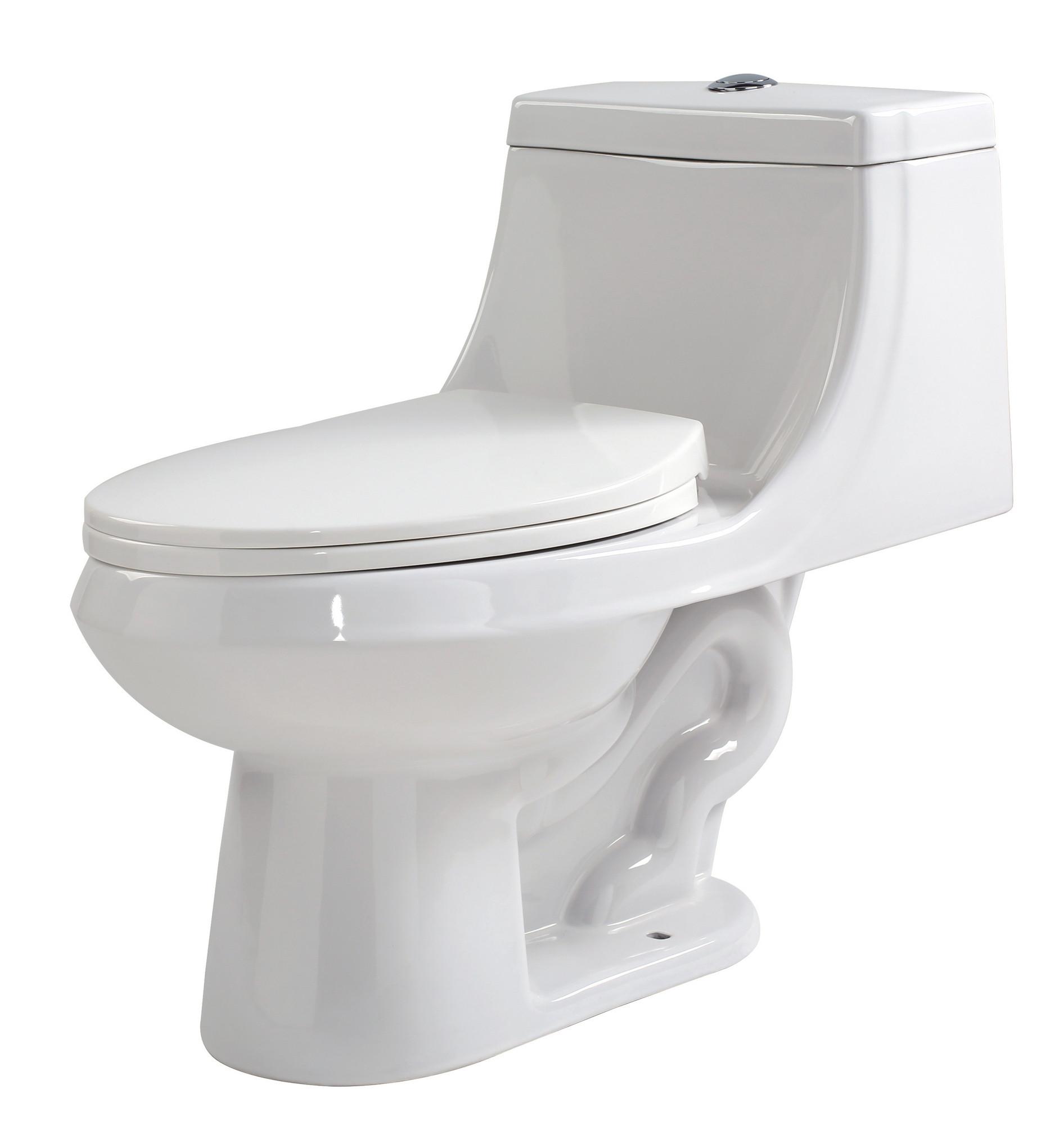 ANZZI T1-AZ056 Odin 1 Piece 1.28 GPF Dual Flush Elongated Toilet In White