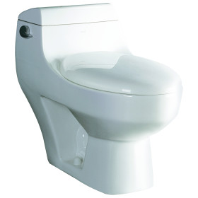 EAGO TB108 One Piece Modern High Efficiency Low Flush Eco Friendly Toilet